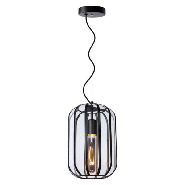 Lucide lampa wisząca Fern 25409-01-30