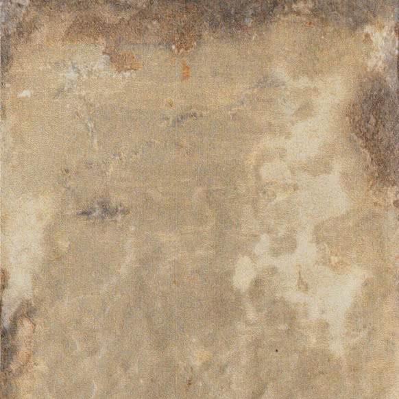 Płytka gresowa Cir Havana Tropicana 20x20 cm